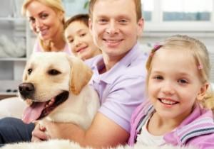 animal clinic família