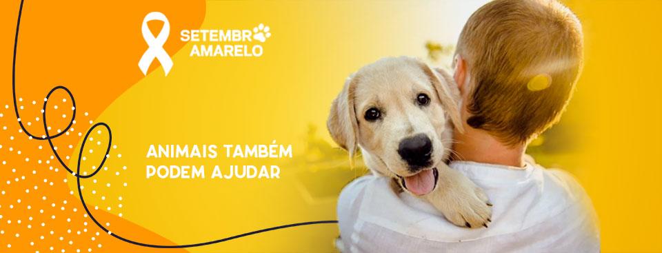 9-Blog-setembro-amarelo-animais-podem-ajudar.jpg