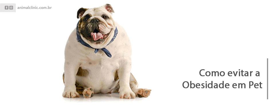 11-obesidade-Blog.jpg
